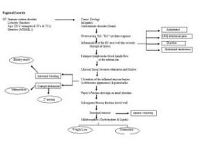 Regional Enteritis Pathophysiology Newsfordumbs